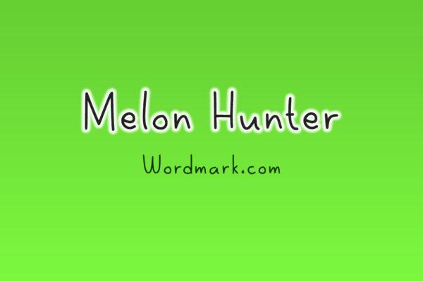 Logo of the Melon Hunter font